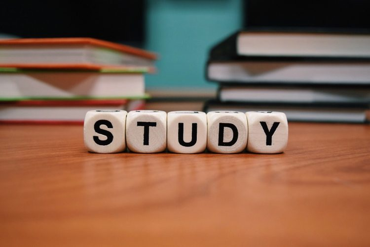 Best Study Abroad Consultant